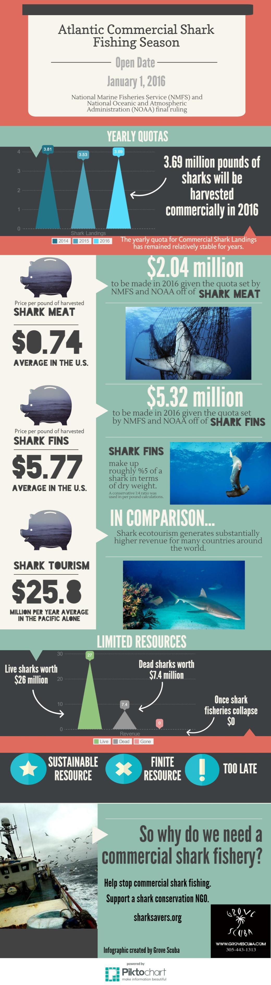 Atlantic Shark Fishing
