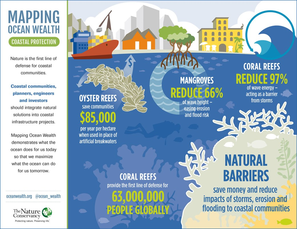 CoastalProtection_InfoGraph