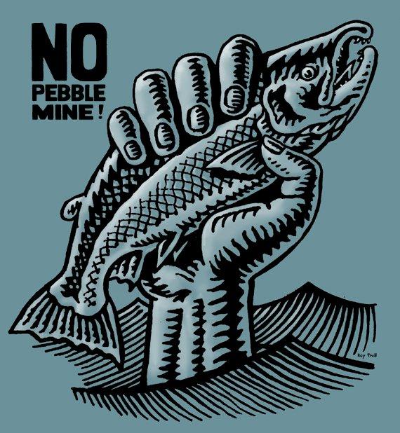 no-pebble
