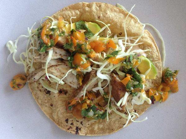 mahi-mahi-taco