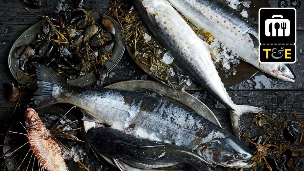Edit-The-Future-of-Fish-0317-GQ-MOFF01-01.jpg